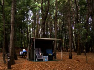 OzTent camped at Shannan National Park