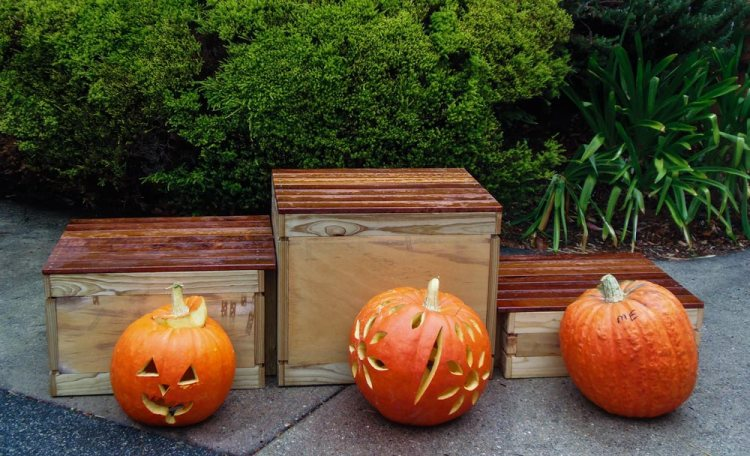 Three pumpkins carved with different designs
