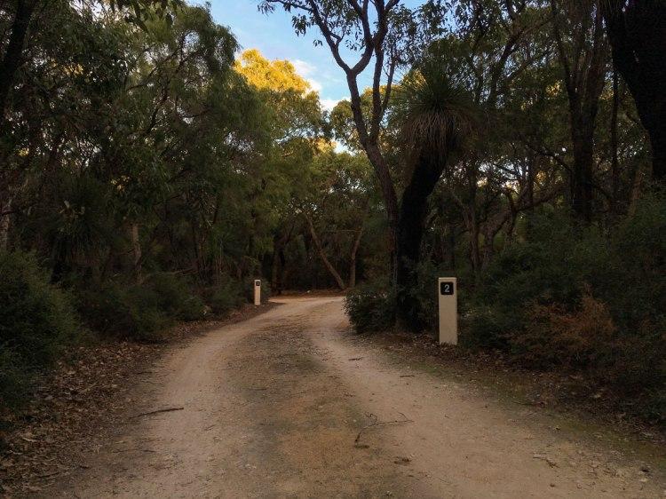Road through Isaacs campsite